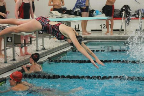 Lady Cubs Swimmers Perform Admirably at Sectionals
